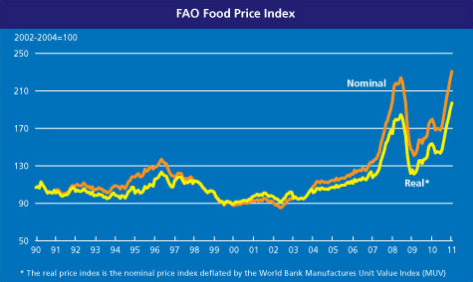 4-02-2011 faofoodpriceindex