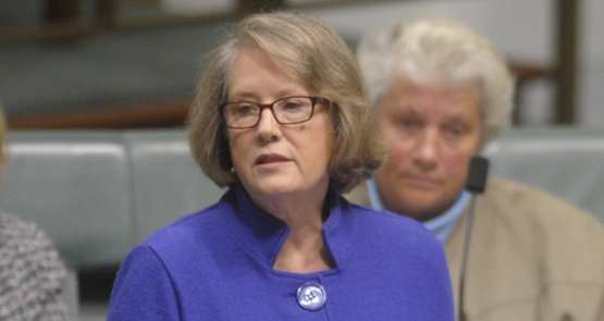Liberal MP Judi Moylan: Howard succeeded because of women, now Abbott fails them