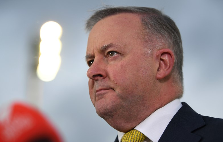 Anthony Albanese Labor leadership 2019 federal election